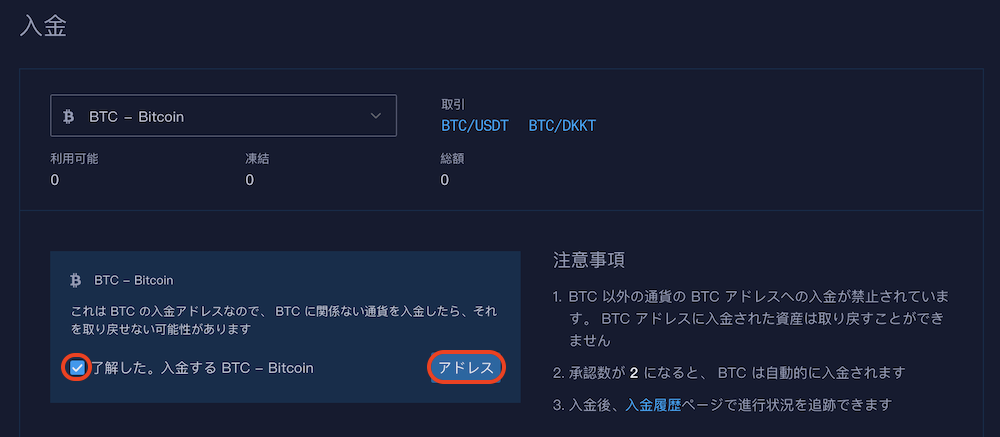 Bitz-登録-入金4