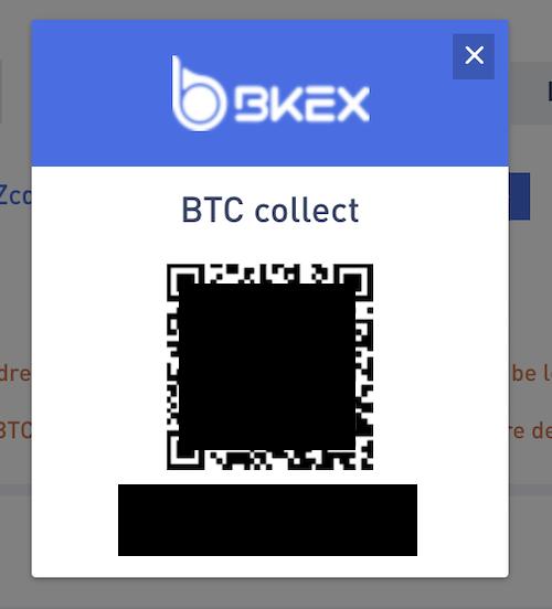 BKEX-登録-入金3