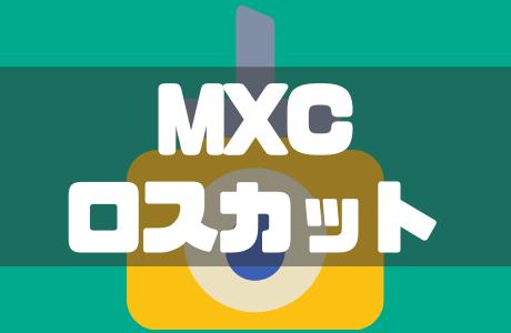 海外仮想通貨取引所MXC(エムエックスシー)の追証とロスカット