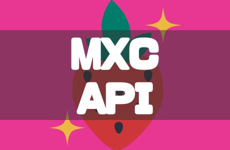 海外仮想通貨取引所MXC(エムエックスシー)のAPI設定を徹底解説!